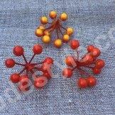 Гроздь ягод. Цвет оранжево - красный.