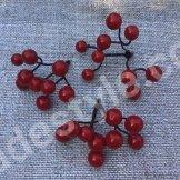 Гроздь ягод красных.