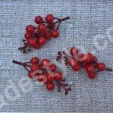 Красные ягоды на ветке.