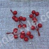 Веточка с ягодами красная .